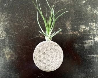 Flower of Life Concrete Magnet with Air Plant - Kitchen Decor - Sacred Geometry
