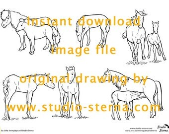 Horse Pony drawing instant download image file foals mares mothers outlines pattern template stock colorin children study animal pet lines