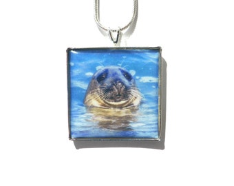 Seal Pendant, Seal Necklace, Seal Photo Pendant, Original Photography, Handmade Jewelry, Necklaces for Women, Animal Jewellery, Seal Gifts