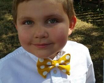 yellow polkadot bow tie