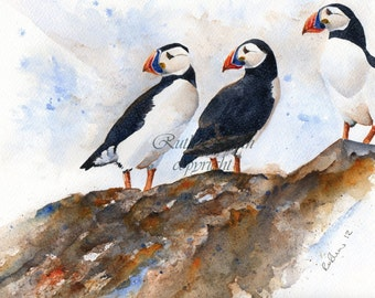 PUFFINS ROCK mounted watercolour print by Ruth Nolan