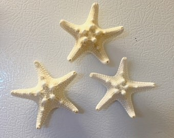 Set of 3 Starfish Magnets