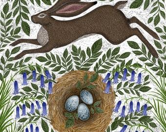 Signed Fine Art Print - Spring Hare