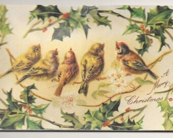 Christmas Birds with Squeaker Postcard, c. 1920