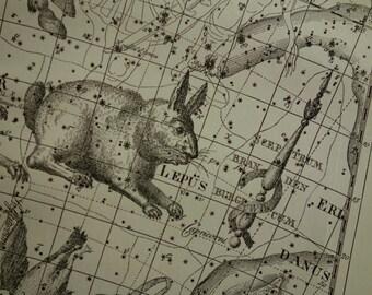Old star chart Dutch vintage astronomy map of Unicorn Argo Rabbit Lepus Dove sign constellation stars zodiac astrology antique illustration