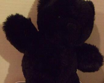 Black Stuffed Bear
