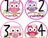 ON SALE Girl Owl Baby Monthly stickers set Precut Month to Month Baby Shower gift owl baby stickers Infant month stickers Onepiece bird age