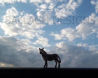 zebra, clouds, blue sky, wall art