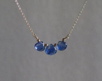 Blue Kyanite Necklace - September Birthstone - Gold Filled