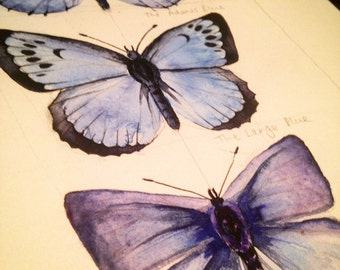 British Butterflies, blue series, original watercolor painting