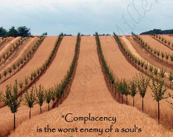 Complacency Greeting card