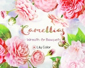 Camellias /5 Camellias clipart /  High Quality 300ppi / Big size / PNG.