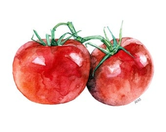 "Tomato Painting - Print from Original Watercolor Painting, ""Two Tomatoes"", Kitchen Decor, Red Tomatoes"