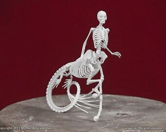 Icthyocentaur Skeleton 3D Print