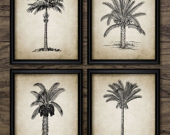 palm tree print set of 4 vintage palm tree botanical art palm tree decor - Palm Tree Decor