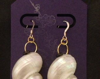 "Big Island of Hawaii White Iridescent Shell Earrings ~2"""