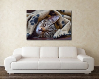 CANVAS PRINT, Sleeping grey tabby kitten canvas, pet photography, animal photography, kitten canvas, tabby cat canvas, sleeping cat, Canvas