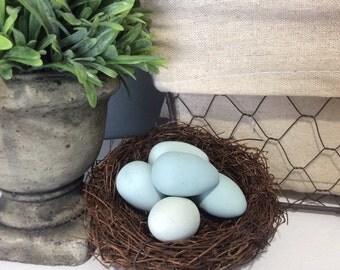Painted Robin's Eggs, Duck Egg Blue, Easter Decor, Spring Decor