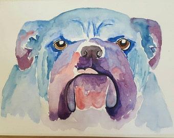 British Bulldog watercolour portrait of a dog from dylshouse bull dog paintings British Bulldog gifts British Bulldog owners gifts bull dogs