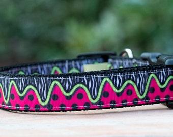 Melting Watermelon Dog Collar  / Dog Collars Australia