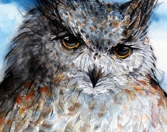 Wisdom Owl Original watercolor painting Owl Artwork Bird picture 9x10.5