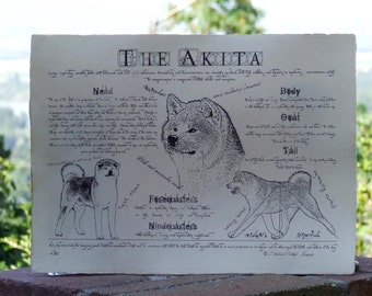 Antique styled dog standard - Akita