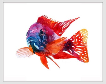 Red Cichlid Fish Art Print,ORIGINAL Watercolor Fish Painting,Home decor