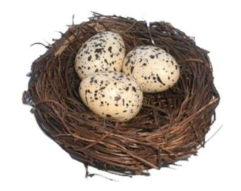 "Fake Twig Bird Nest With 3 Eggs 3"" DIY Spring Nature Crafts Spring Decor"