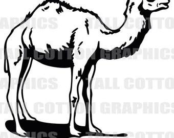 ARABIAN - Dromedary - CAMEL Vinyl Decal Sticker decor #WL061