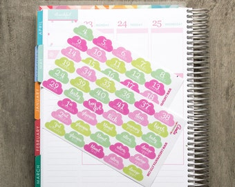 Pregnancy stickers, pregnancy planner, pregnant women, planner stickers, baby milestone, appointment eclp filofax happy planner kikkik