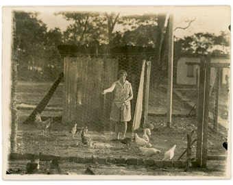Feeding the chicken - original vintage photo 20s 30s - lady with bobbed hair feeding poultry - animals, birds, farming