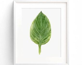 Botanical Watercolor Leaf Wall Art Print, Pantone Greenery 5x7 - 11x14