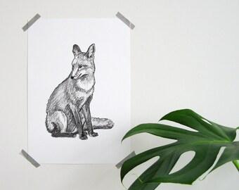 Hand-drawn Fox A4 poster-hand drawn fox print