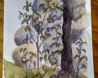Watercolor Landscape Study