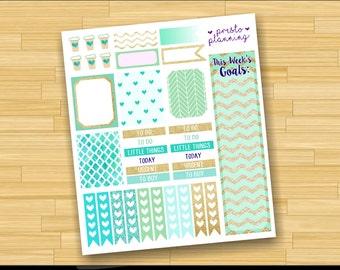 Teal and Gold Glitter Erin Condren Life Planner Theme Sticker Kit