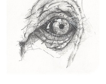 Elephant Eye- high quality print from original sketch by www.onecreativemother.com.