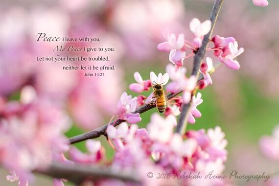 Scripture Wall Art // Canvas Gallery Wrap // Honeybee on Redbud // John 14:27