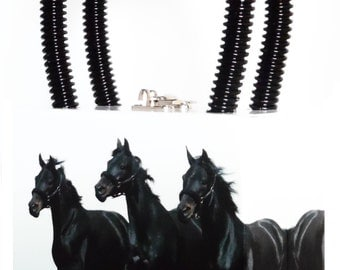 Sandy Three Stallions
