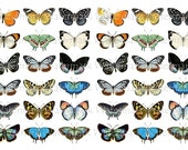 Butterfly Decals WaterSlide Decals, Decorate Flame-less Candles, Soap, Glass, Home Decor, Magnets, Jewelry, Craft Projects, Scrapbooks