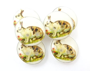 """6 SMALL Rabbit Buttons.  1/2"""" or 13 mm round.   Vintage Rabbit Image Novelty Buttons.  Craft Buttons."""