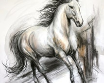 Original Horse Drawing in charcoal Of 'Unbridled Passion'