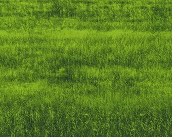Green Grass Danscapes Dan Morris RJR Fabric 1 yard