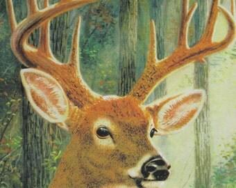 """Pillow Fabric Panels Deer Wildlife All Cotton 45"""" x 18"""" OOP Buck Men"""