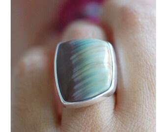 Painter's Ring Imperial Jasper