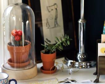 Space Plan. Furniture Layout . Interior Design Consultation . E-Design . Virtual Design . E Decorating