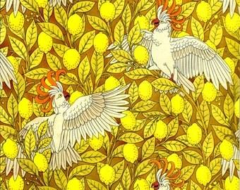 antique french art nouveau wallpaper design cockatoo and lemons illustration digital download
