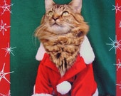 Green Santa Christmas Card
