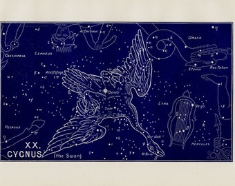 1895 Antique STARS CHART print, Cygnus, the swan, Constellations. original vintage astronomy lithograph + 100 years old