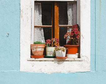 Lisbon Photo,Blue Wall, Crochet Curtains, Travel Photo, White Window, Lisbon Print, Romantic Travel Print, Flower Vases by the window