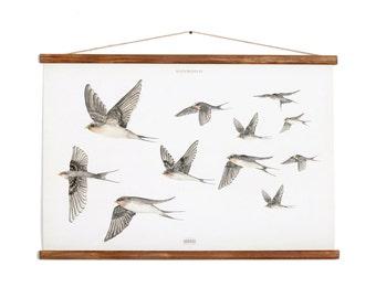 Andorinhas - flying swallows poster - handmade vintage inspired bird illustration ANDPA2001